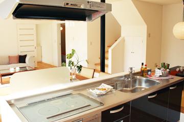 cat-kitchen
